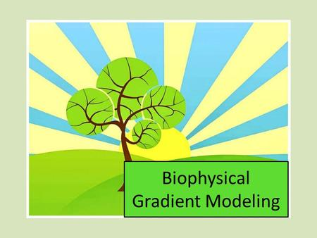 Biophysical Gradient Modeling. Management Needs Decision Support Tools – Baseline Information Vegetation characteristics Forest stand structure Fuel loads.