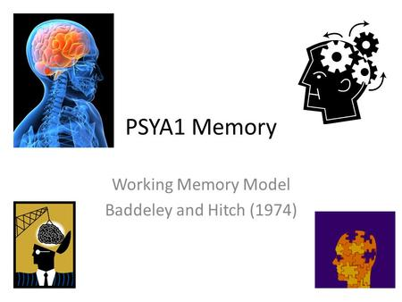 Working Memory Model Baddeley and Hitch (1974)