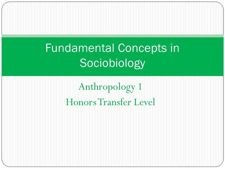Anthropology 1 Honors Transfer Level Fundamental Concepts in Sociobiology.