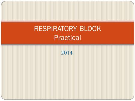 2014 RESPIRATORY BLOCK Practical. Streptococcus pyogenes = Group A Strep Carried by 10-25% of many in throat often no symptoms it is Cause of strep throat.