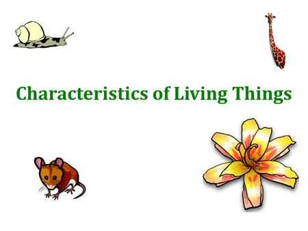 Characteristics of Living Things. What is Biology? 1.The study of living things (organisms) 2. The study of interactions of living things 3. -life -study.