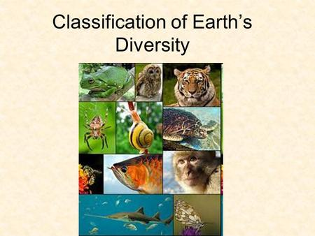 Classification of Earth's Diversity Biodiversity Biodiversity – the variety of organisms on earth is the result of 3.5 billion years of evolution Approx.