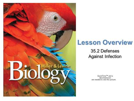 Lesson Overview Lesson Overview Defenses Against Infection Lesson Overview 35.2 Defenses Against Infection.