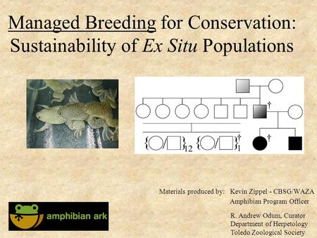 Managed Breeding for Conservation: Sustainability of Ex Situ Populations Kevin Zippel - CBSG/WAZA Amphibian Program Officer Materials produced by: R. Andrew.