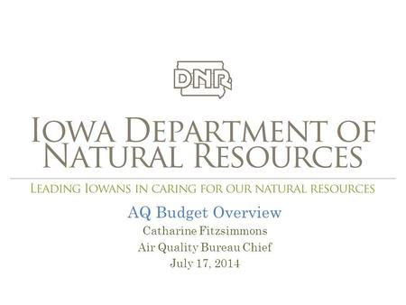 AQ Budget Overview Catharine Fitzsimmons Air Quality Bureau Chief July 17, 2014.