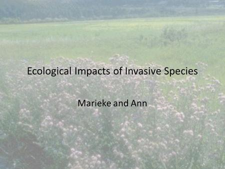 Ecological Impacts of Invasive Species Marieke and Ann.