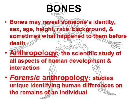 BONES Bones may reveal someone's identity, sex, age, height, race, background, & sometimes what happened to them before death Anthropology : the scientific.