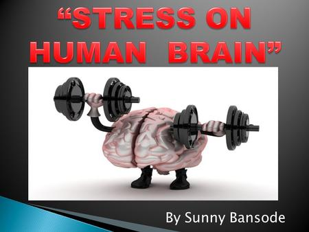 By Sunny Bansode. Facts about the Human Brain The human brain is the largest brain of all vertebrates relative to body size It weighs about 3 pounds (1.4.