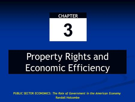 CHAPTER 3 Property Rights and Economic Efficiency PUBLIC SECTOR ECONOMICS: The Role of Government in the American Economy Randall Holcombe.