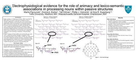 Electrophysiological evidence for the role of animacy and lexico-semantic associations in processing nouns within passive structures Martin Paczynski 1,
