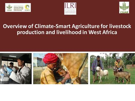 Overview of Climate-Smart Agriculture for livestock production and livelihood in West Africa.
