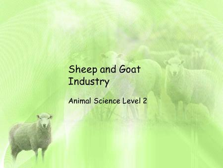 Sheep <strong>and</strong> Goat Industry Animal Science Level 2. Unit Map: Follow Along in your packet WHAT ARE YOU LEARNING? AS.06.02(Basic): Recognize, identify, <strong>and</strong>.