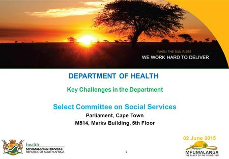 WHEN THE SUN RISES WE WORK HARD TO DELIVER 1 DEPARTMENT OF HEALTH Key Challenges in the Department Select Committee on Social Services Parliament, Cape.