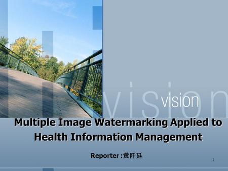 Multiple Image Watermarking Applied to Health Information Management
