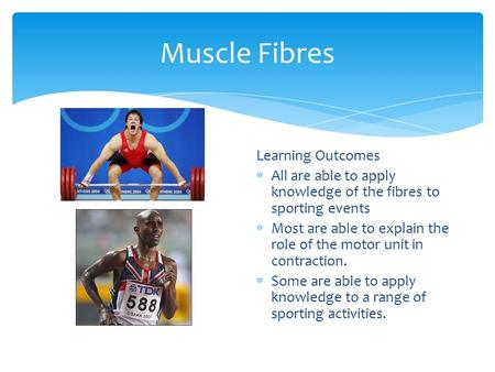 Muscle Fibres Learning Outcomes  All are able to apply knowledge of the fibres to sporting events  Most are able to explain the role of the motor unit.