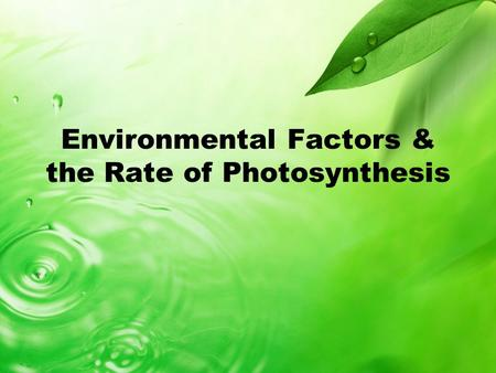 Environmental Factors & the Rate of Photosynthesis.
