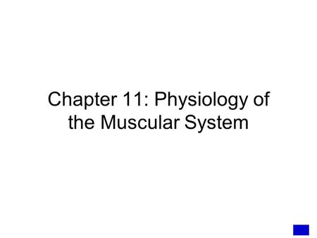 Chapter 11: Physiology of the Muscular System