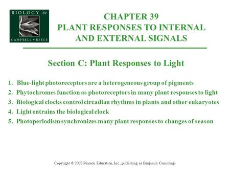 CHAPTER 39 PLANT RESPONSES TO INTERNAL AND EXTERNAL SIGNALS Copyright © 2002 Pearson Education, Inc., publishing as Benjamin Cummings Section C: Plant.