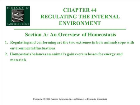 CHAPTER 44 REGULATING THE INTERNAL ENVIRONMENT Copyright © 2002 Pearson Education, Inc., publishing as Benjamin Cummings Section A: An Overview of Homeostasis.
