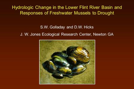 Hydrologic Change in the Lower Flint River Basin and Responses of Freshwater Mussels to Drought S.W. Golladay and D.W. Hicks J. W. Jones Ecological Research.