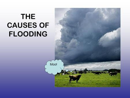 THE CAUSES OF FLOODING Moo!. Causes of flooding memory game- 1 minute to remember Heavy rain rainfall Snow melt Antecedent rainfall (it has rained before.