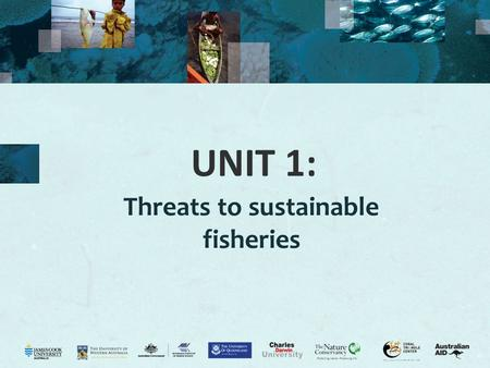 UNIT 1: Threats to sustainable fisheries. 2 Internal threats Activity 1.1: List three (3) potential threats to fisheries. INTERNAL THREATS Overfishing.