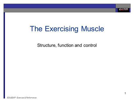 EDU2EXP Exercise & Performance 1 The Exercising Muscle Structure, function and control.