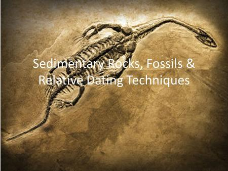 relative dating sedimentary rocks Determining the ages of rocks using fossils relative dating grains comprising detrital sedimentary rocks are not the same chapter09_geologic_timeppt.