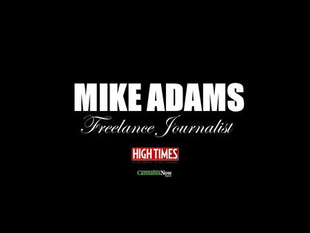 MIKE ADAMS Freelance Journalist. How Did You Get the Gig With High Times?