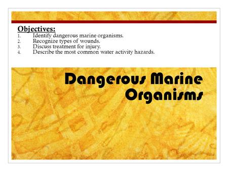 Dangerous Marine Organisms Objectives: 1. Identify dangerous marine organisms. 2. Recognize types of wounds. 3. Discuss treatment for injury. 4. Describe.