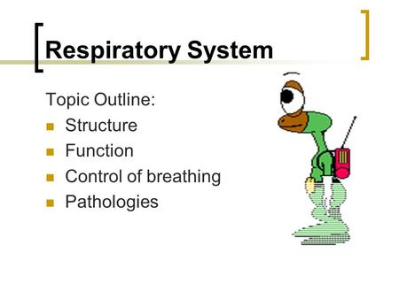 Respiratory System Topic Outline: Structure Function Control of breathing Pathologies.