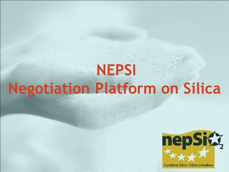 NEPSI Negotiation Platform on Silica. NePSi : Aggregates, Cement, Ceramics, Foundry, Glass fibre, Special Glass, Container Glass and Flat Glass, Industrial.