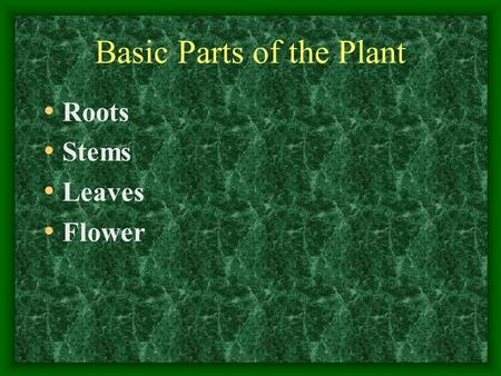 Basic Parts of the Plant Roots Stems Leaves Flower.