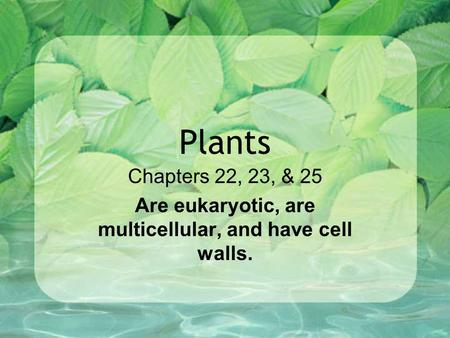 Chapters 22, 23, & 25 Are eukaryotic, are multicellular, and have cell walls. Plants.