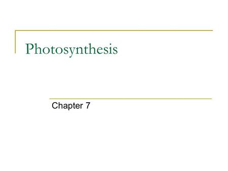 Photosynthesis Chapter 7. Photosynthesis Almost all plants are photosynthetic autotrophs  As are some bacteria and protists  Generate their own organic.