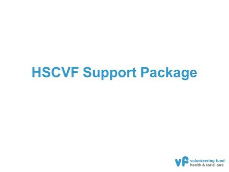 HSCVF Support Package. Delivery agencies A highly experienced, third sector focussed team Extensive experience in capacity building, volunteering, health.