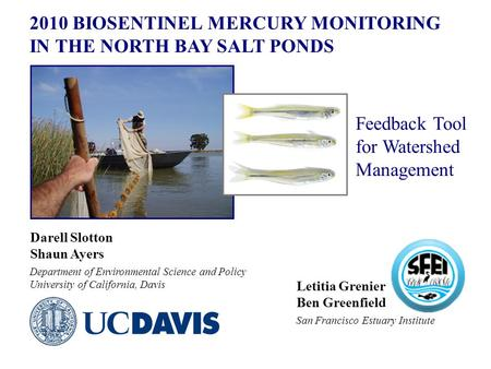 2010 BIOSENTINEL MERCURY MONITORING IN THE NORTH BAY SALT PONDS Darell Slotton Shaun Ayers Department of Environmental Science and Policy University of.