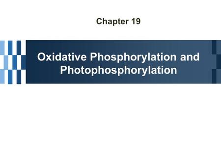 Chapter 19 Oxidative Phosphorylation and Photophosphorylation.