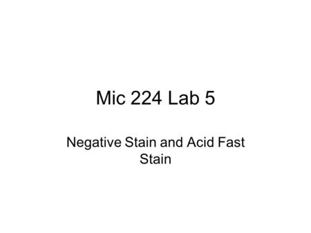 Mic 224 Lab 5 Negative Stain and Acid Fast Stain.