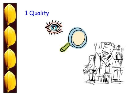1 Quality. Program Evaluation of Physical Quality Understanding bits of Cooking Quality Discussion and questions 1 2 3 Eyes vs Instruments Associating.