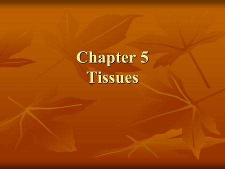Chapter 5 Tissues. How is it all Connected? Cells = basic unit of life Cells = basic unit of life Cells come together to form TISSUES Cells come together.