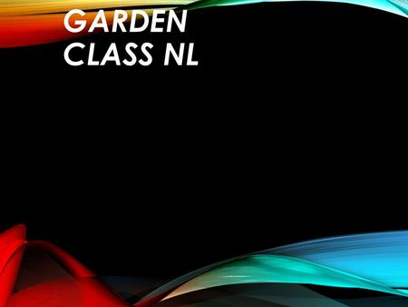 VEGETABLE GARDEN CLASS NL. OUR IDEA We think it would be a very innovative idea to build a vegetable garden in the school grounds. People and teachers.