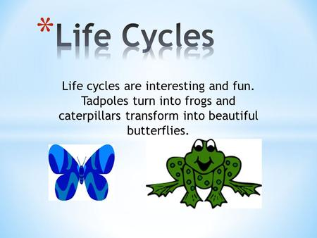Life cycles are interesting and fun. Tadpoles turn into frogs and caterpillars transform into beautiful butterflies.