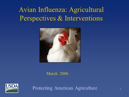 Protecting American Agriculture 1 Avian Influenza: Agricultural Perspectives & Interventions March 2006.
