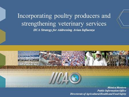 Incorporating poultry producers and strengthening veterinary services IICA Strategy for Addressing Avian Influenza Mónica Montero Public Information Office.