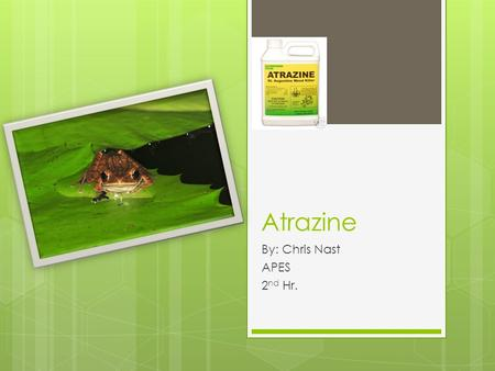 Atrazine By: Chris Nast APES 2 nd Hr.. Classification  Atrazine is a white, crystalline solid that is used as a synthetic herbicide to kill broadleaf.