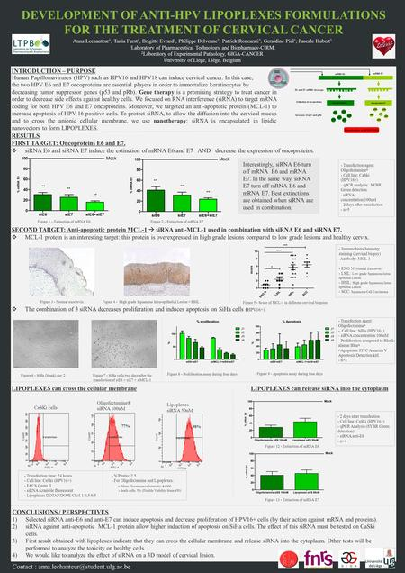 RESULTS 1) Oligofectamine ® allows effective transfection of siRNA scramble 2) siE6 and siE7 decrease mRNA encoding for both oncoproteins 3) siE7 and association.