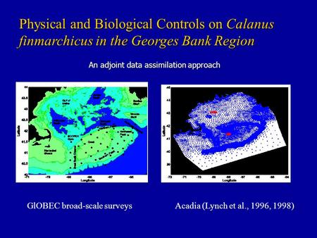 An adjoint data assimilation approach Physical and Biological Controls on Calanus finmarchicus in the Georges Bank Region GlOBEC broad-scale surveysAcadia.