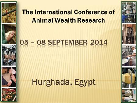 Hurghada, Egypt The International Conference of Animal Wealth Research.