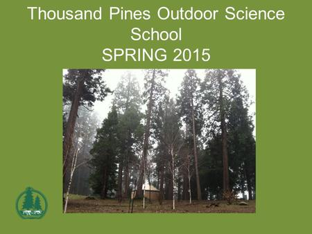 Thousand Pines Outdoor Science School SPRING 2015